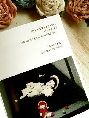 画像5: 【かわい金魚 】 作品集  「金魚箱」