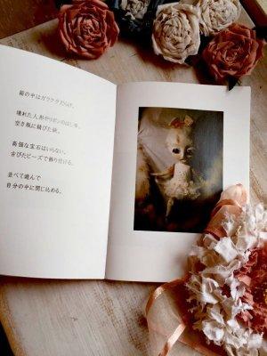 画像4: 【かわい金魚 】 作品集  「金魚箱」