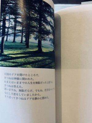 画像5: 【Melancolia Storytelling】「melancolia storytelling」