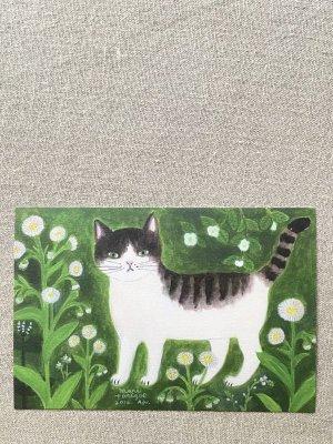 画像2: 【とりごえまり】ポストカード 「はるさん」